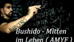 Bushido - Mitten im Leben