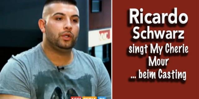 Ricardo Schwarz - Singt My Cherie Mour